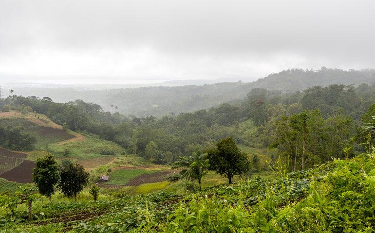 Krajina kolem Tomohonu je často zahalená v mracích. Sopečná půda a vlhké klima svědčí zemědělství.