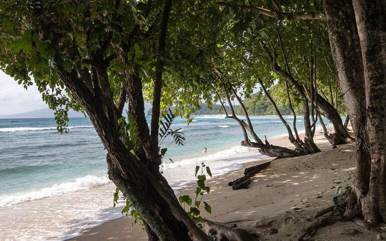 Atmosféra této pláže se nedá vyfotit. Obrovské stromy, čistá pláž, bouřlivé vlny a džungle za zády jí dodávala divokou náladu.