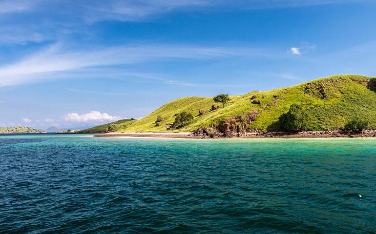 Ostrovy za Wallaceovou linií mají vegetaci podobnou té australské.